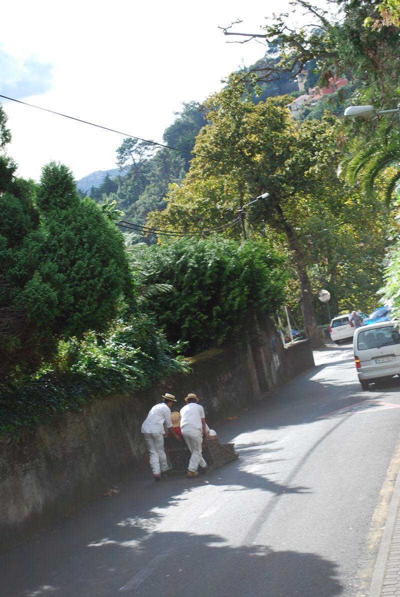 Carreiros de Monte - Funchal - Madeira - Portugal