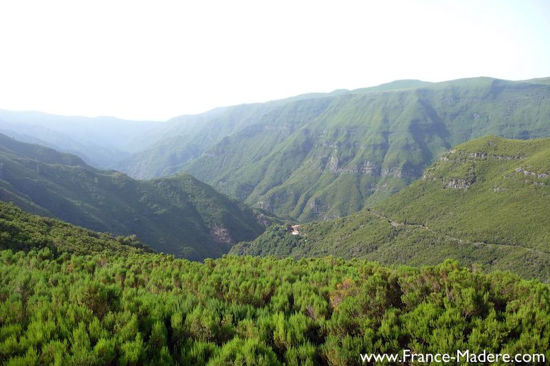 Rabacal - Madeira
