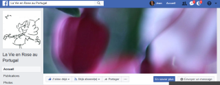 La vie en rose facebook